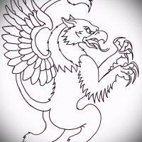 Эскизы тату грифон
