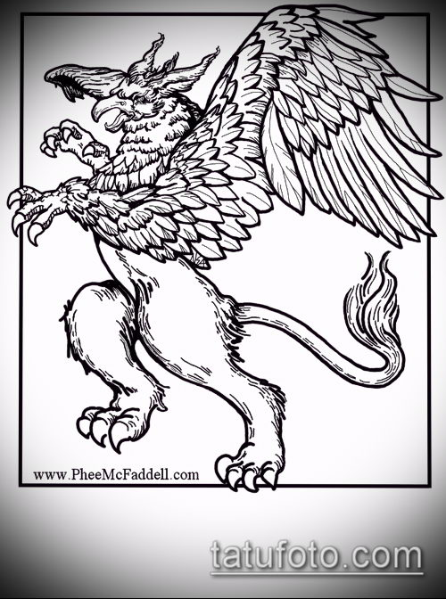эскиз тату грифон №613 - прикольный вариант рисунка, который удачно можно использовать для доработки и нанесения как тату грифон птица