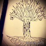 эскиз тату дерево №333 - прикольный вариант рисунка, который хорошо можно использовать для переработки и нанесения как кельтское дерево тату