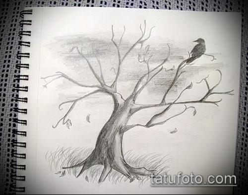 эскиз тату дерево №992 - эксклюзивный вариант рисунка, который легко можно использовать для преобразования и нанесения как тату дерево дуб