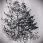 эскиз тату дерево №886 - интересный вариант рисунка, который успешно можно использовать для преобразования и нанесения как тату дерево на шее