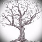 эскиз тату дерево №288 - классный вариант рисунка, который удачно можно использовать для преобразования и нанесения как тату под дерево