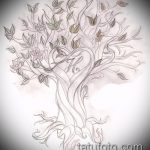 эскиз тату дерево №34 - интересный вариант рисунка, который легко можно использовать для переработки и нанесения как тату дерево сосна