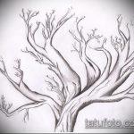 эскиз тату дерево №18 - прикольный вариант рисунка, который успешно можно использовать для доработки и нанесения как тату дерево и луна