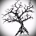 эскиз тату дерево №469 - классный вариант рисунка, который удачно можно использовать для доработки и нанесения как тату дерево в круге