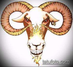 эскиз тату козел №535 - интересный вариант рисунка, который успешно можно использовать для переделки и нанесения как тату череп козла