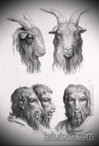 эскиз тату козел №351 - классный вариант рисунка, который успешно можно использовать для переделки и нанесения как тату череп козла