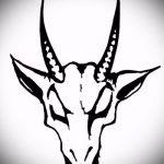 эскиз тату козел №231 - эксклюзивный вариант рисунка, который хорошо можно использовать для переделки и нанесения как тату череп козла