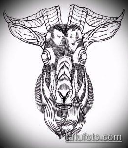 эскиз тату козел №239 - классный вариант рисунка, который хорошо можно использовать для переделки и нанесения как тату козел ест траву
