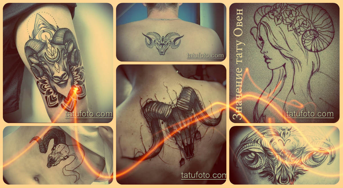 Значение тату Овен - примеры готовых тату на фото