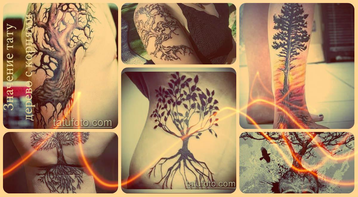 Значение тату дерево с корнями - примеры фото