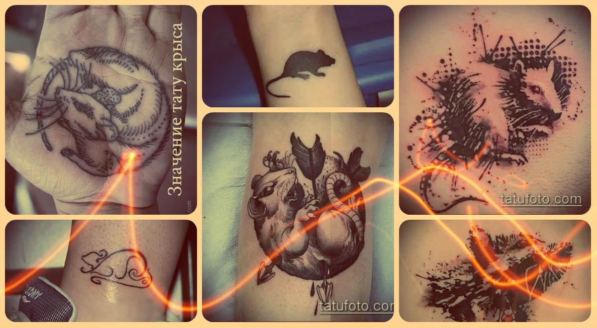 Значение тату крыса - примеры фото готовых татуировок