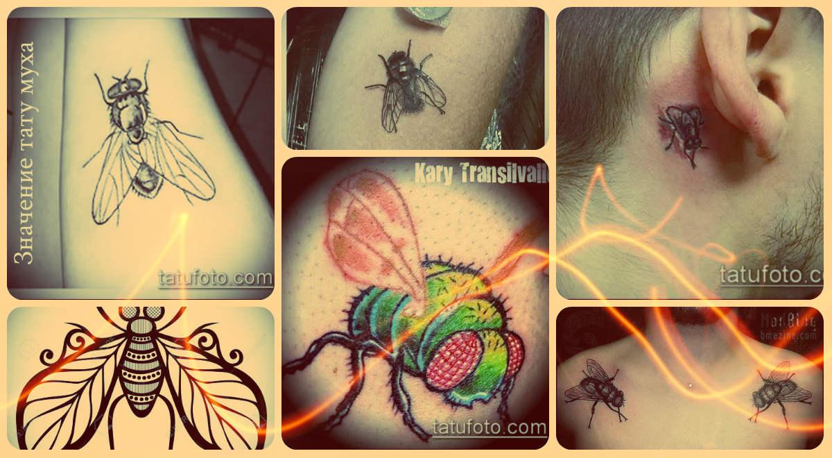 Значение тату муха - примеры интересных готовых татуировок