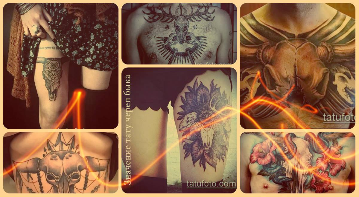 Значение тату череп быка - примеры фото готовых тату
