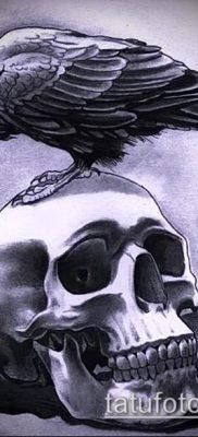 ворон на черепе тату (значение) – пример интересного рисунка тату – 013 tatufoto.com