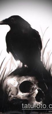 ворон на черепе тату (значение) – пример интересного рисунка тату – 017 tatufoto.com