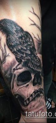 ворон на черепе тату (значение) – пример интересного рисунка тату – 024 tatufoto.com