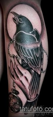 ворон на черепе тату (значение) – пример интересного рисунка тату – 049 tatufoto.com