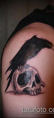 ворон на черепе тату (значение) – пример интересного рисунка тату – 053 tatufoto.com