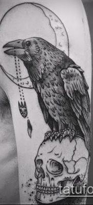 ворон на черепе тату (значение) – пример интересного рисунка тату – 055 tatufoto.com