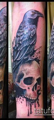 ворон на черепе тату (значение) – пример интересного рисунка тату – 059 tatufoto.com