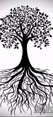 тату дерево с корнями (значение) – пример интересного рисунка тату – 005 tatufoto.com