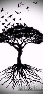 тату дерево с корнями (значение) – пример интересного рисунка тату – 011 tatufoto.com