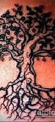 тату дерево с корнями (значение) – пример интересного рисунка тату – 012 tatufoto.com