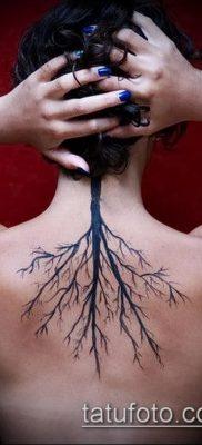 тату дерево с корнями (значение) – пример интересного рисунка тату – 013 tatufoto.com