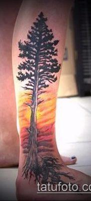 тату дерево с корнями (значение) – пример интересного рисунка тату – 015 tatufoto.com
