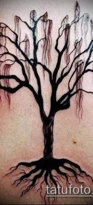 тату дерево с корнями (значение) – пример интересного рисунка тату – 023 tatufoto.com