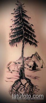 тату дерево с корнями (значение) – пример интересного рисунка тату – 027 tatufoto.com
