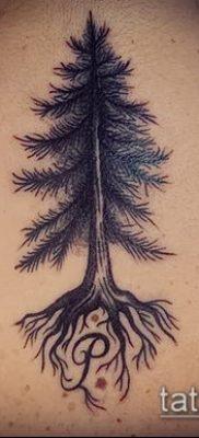 тату дерево с корнями (значение) – пример интересного рисунка тату – 037 tatufoto.com