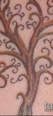 тату дерево с корнями (значение) – пример интересного рисунка тату – 043 tatufoto.com