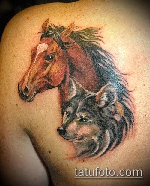 тату конь фото (значение) - пример интересного рисунка тату - 008 tatufoto.com