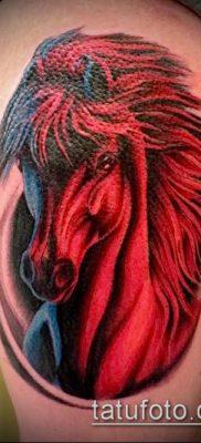 тату конь фото (значение) – пример интересного рисунка тату – 018 tatufoto.com