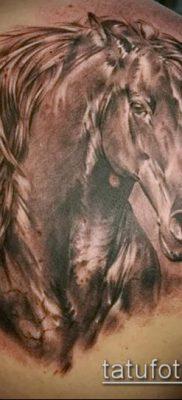 тату конь фото (значение) – пример интересного рисунка тату – 019 tatufoto.com