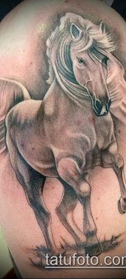 тату конь фото (значение) – пример интересного рисунка тату – 026 tatufoto.com