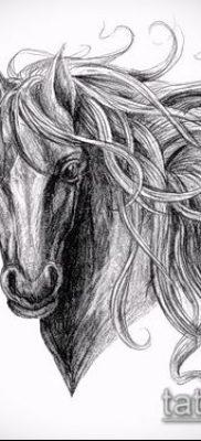 тату конь фото (значение) – пример интересного рисунка тату – 028 tatufoto.com