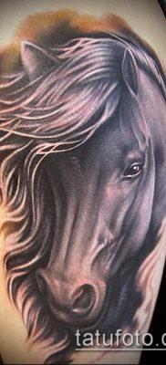 тату конь фото (значение) – пример интересного рисунка тату – 059 tatufoto.com