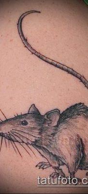 тату крыса фото (значение) – пример интересного рисунка тату – 013 tatufoto.com