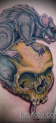 тату крыса фото (значение) – пример интересного рисунка тату – 015 tatufoto.com