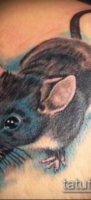 тату крыса фото (значение) – пример интересного рисунка тату – 024 tatufoto.com
