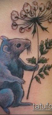 тату крыса фото (значение) – пример интересного рисунка тату – 025 tatufoto.com