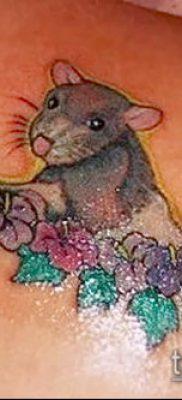 тату крыса фото (значение) – пример интересного рисунка тату – 026 tatufoto.com