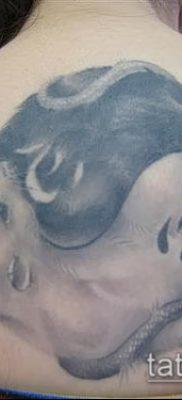 тату крыса фото (значение) – пример интересного рисунка тату – 042 tatufoto.com