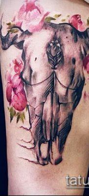 тату череп быка фото (значение) – пример интересного рисунка тату – 016 tatufoto.com