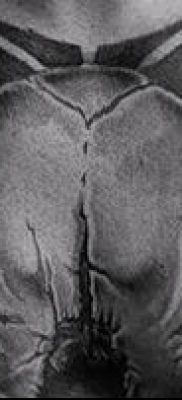 тату череп быка фото (значение) – пример интересного рисунка тату – 025 tatufoto.com