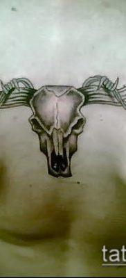 тату череп быка фото (значение) – пример интересного рисунка тату – 026 tatufoto.com