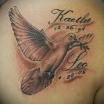 фото тату голубь №266 - крутой вариант рисунка, который легко можно использовать для переделки и нанесения как тату белый голубь